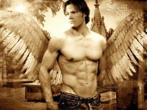 jared angel 02 07 10
